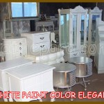 WHITE PAINT COLOR